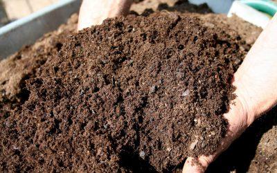 The composting workshop