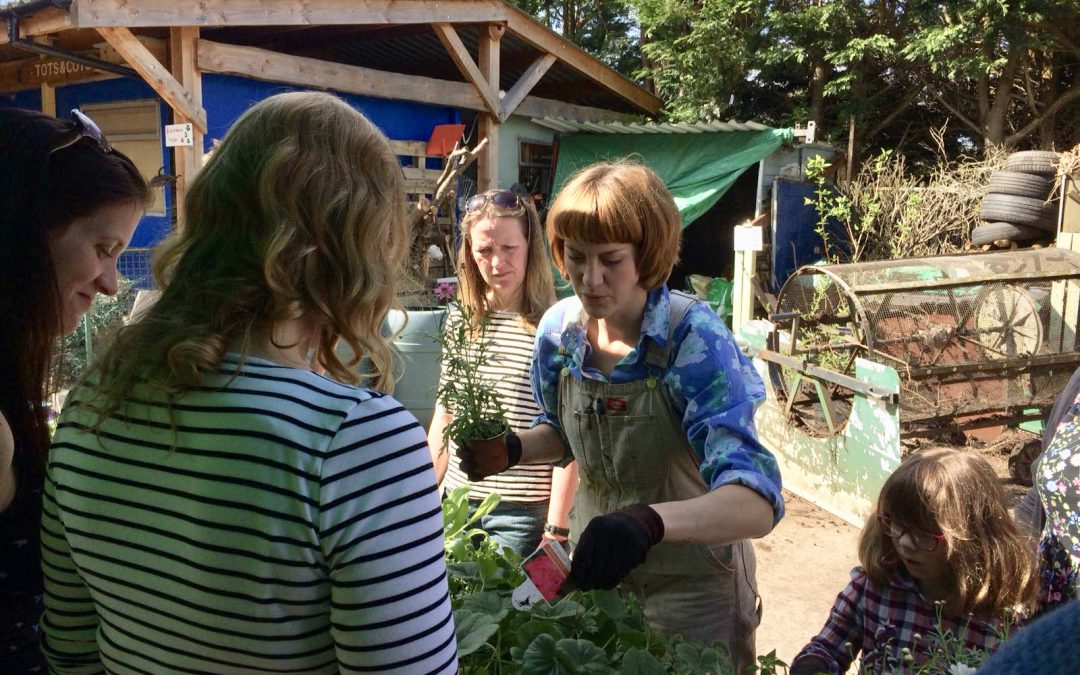 Hanging Basket and Container Planting Workshop with Mary Roe